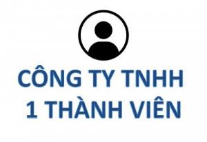 Công ty TNHH 1 thành viên là gì?