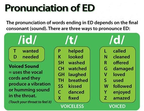 cách phát âm s es ed và quy tắc sử dụng đuôi ed