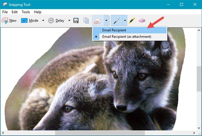 Gửi ảnh đã chụp qua email với 2 tùy chọn khác nhau