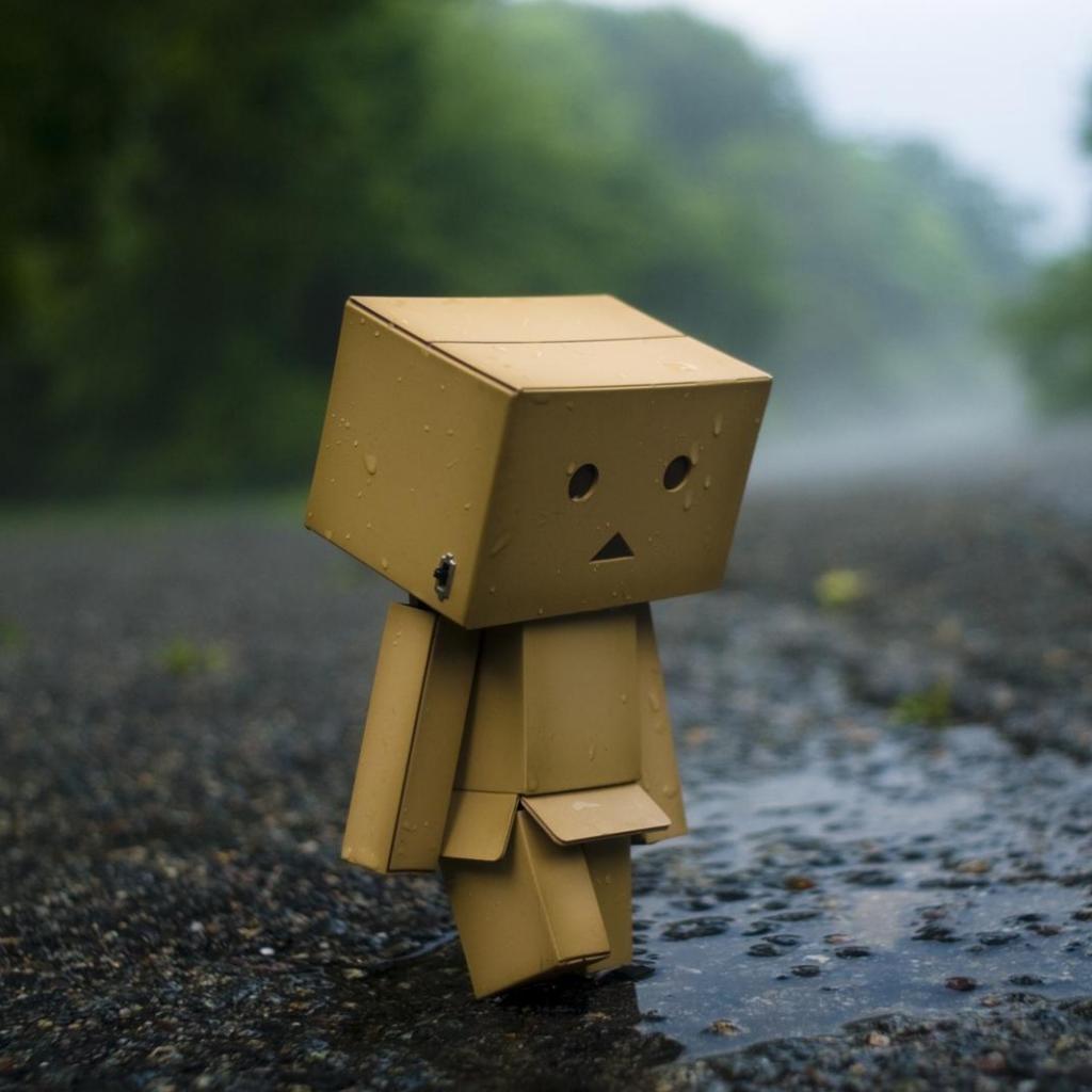 Hình ảnh Danbo buồn một mình
