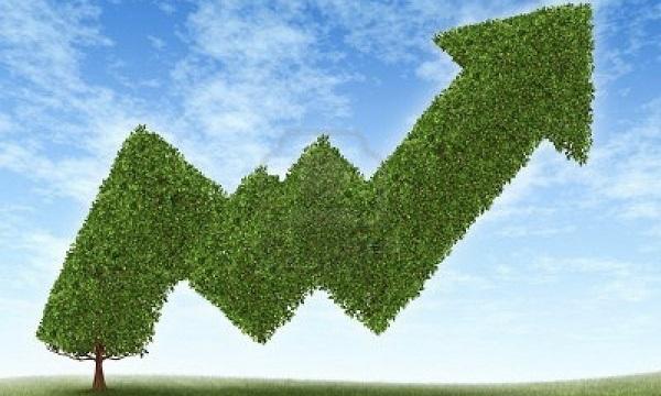 6s là gì và nhân tố bền vững của quy trình này