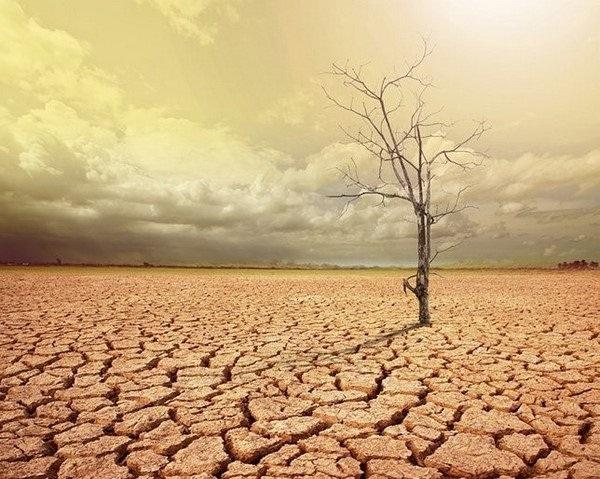 ô nhiễm là gì và ô nhiễm hệ sinh thái