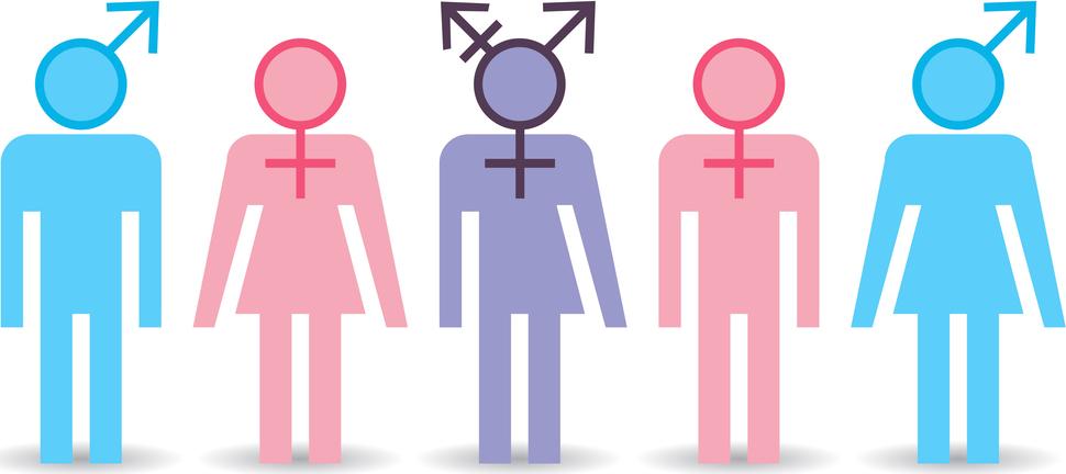 Xu hướng tình dục liên quan đến sự kết hợp phức tạp của nhiều yếu tố khác nhau